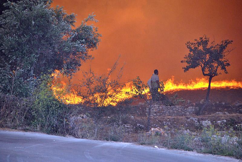 Δραματική η κατάσταση στη Ζάκυνθο: Μάχη όλη τη νύχτα με τη φωτιά - Εικόνα 5