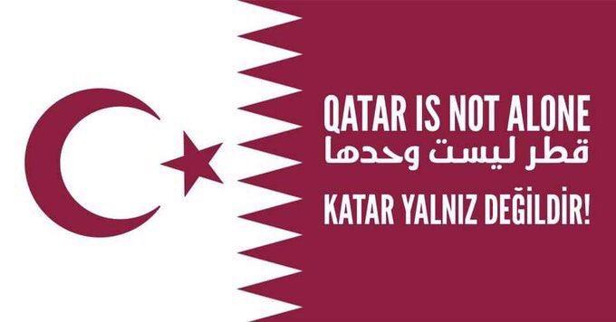 Εξέλιξη βόμβα: Το Πακιστάν έτοιμο να στείλει 20.000 στρατιώτες στο Κατάρ λένε οι Τούρκοι – Τουρκικά μαχητικά και πλοία με προορισμό Ντόχα – Η Γερμανία υπέρ Κατάρ και εναντίον ΗΠΑ – Δηλώσεις Ζ.Γκάμπριελ (εικόνες, βίντεο) - Εικόνα5
