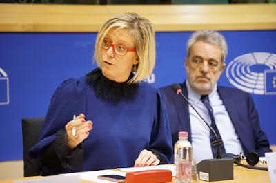 Η Ευρώπη που κόπτεται για τα ανθρώπινα δικαιώματα κλείνει τα μάτια μπροστά στην ωμή καταπάτησή τους στη Νότια Αφρική, καταγγέλλουν σε Συνέδριο ευρωβουλευτές της ομάδας του ENF - Εικόνα5