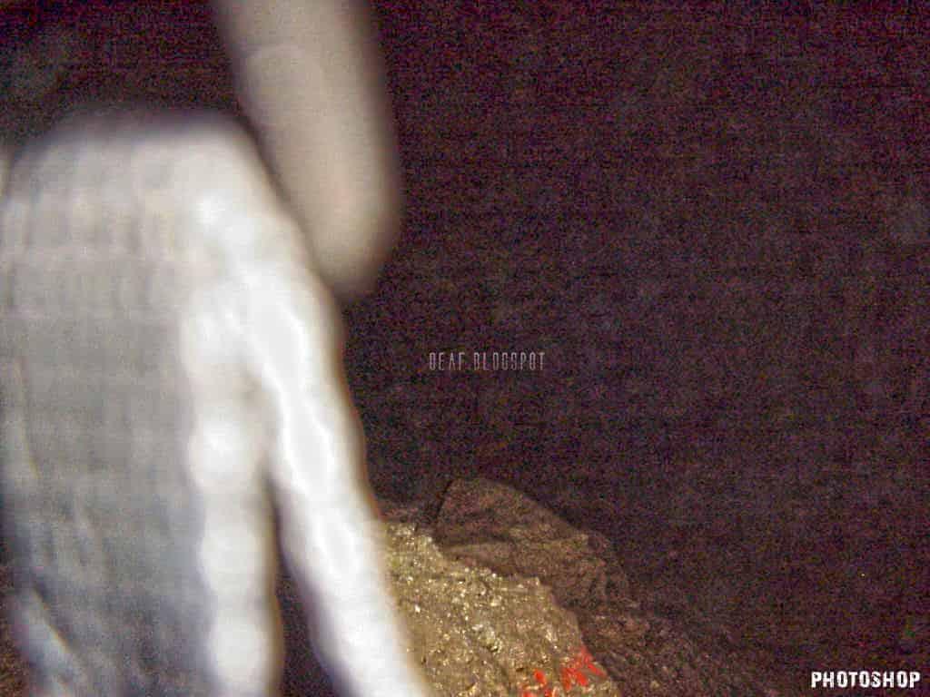 Τι Υπάρχει και Ζει Μέσα στο Σπήλαιο της Πεντέλης (εκπληκτικές φωτογραφίες και video) - Εικόνα12