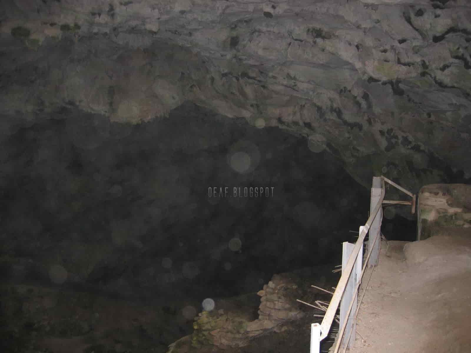 Τι Υπάρχει και Ζει Μέσα στο Σπήλαιο της Πεντέλης (εκπληκτικές φωτογραφίες και video) - Εικόνα15