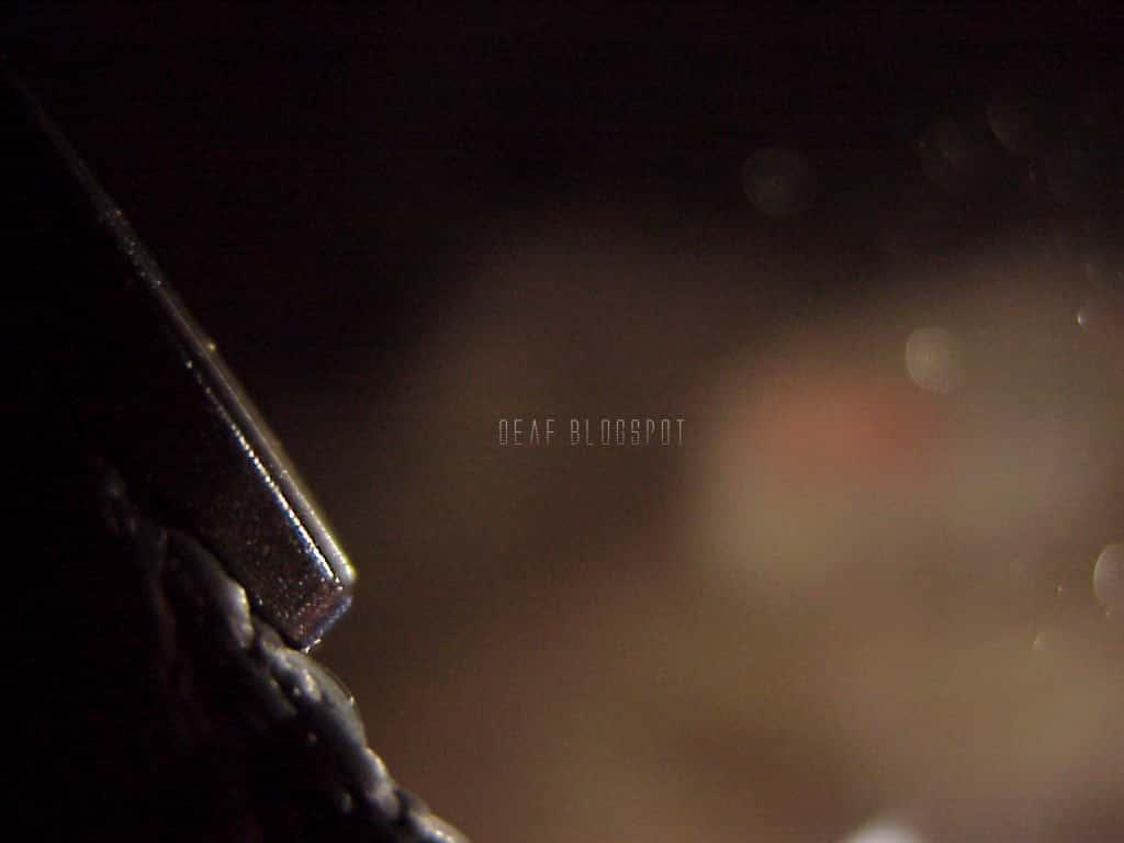 Τι Υπάρχει και Ζει Μέσα στο Σπήλαιο της Πεντέλης (εκπληκτικές φωτογραφίες και video) - Εικόνα3
