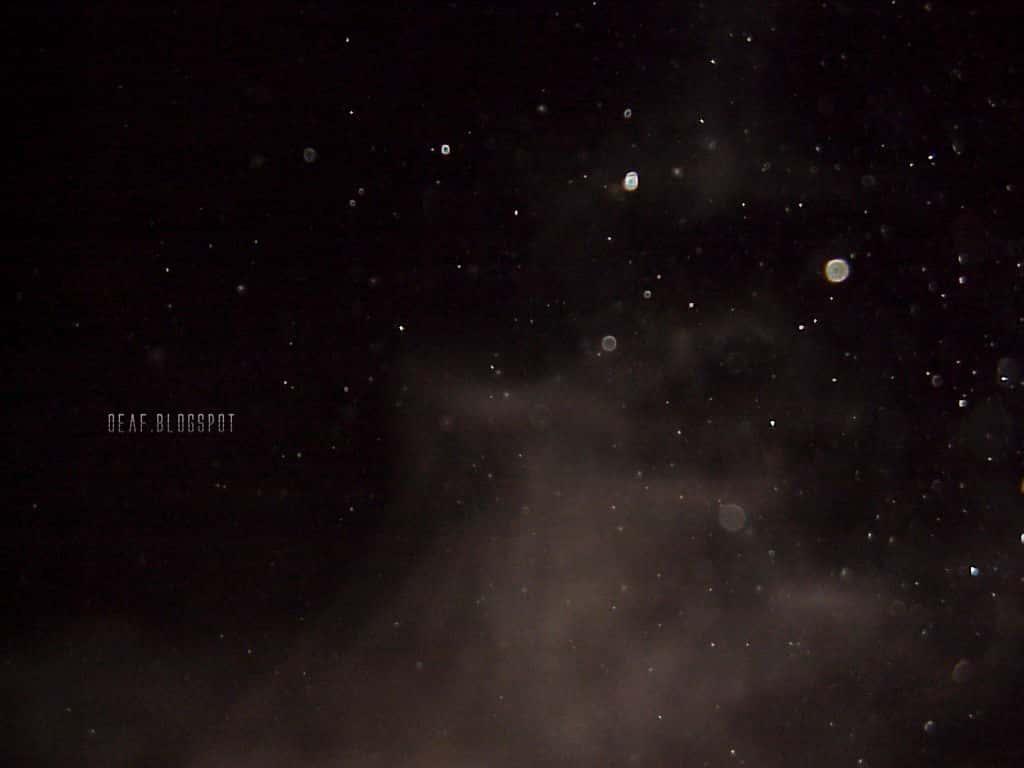 Τι Υπάρχει και Ζει Μέσα στο Σπήλαιο της Πεντέλης (εκπληκτικές φωτογραφίες και video) - Εικόνα49