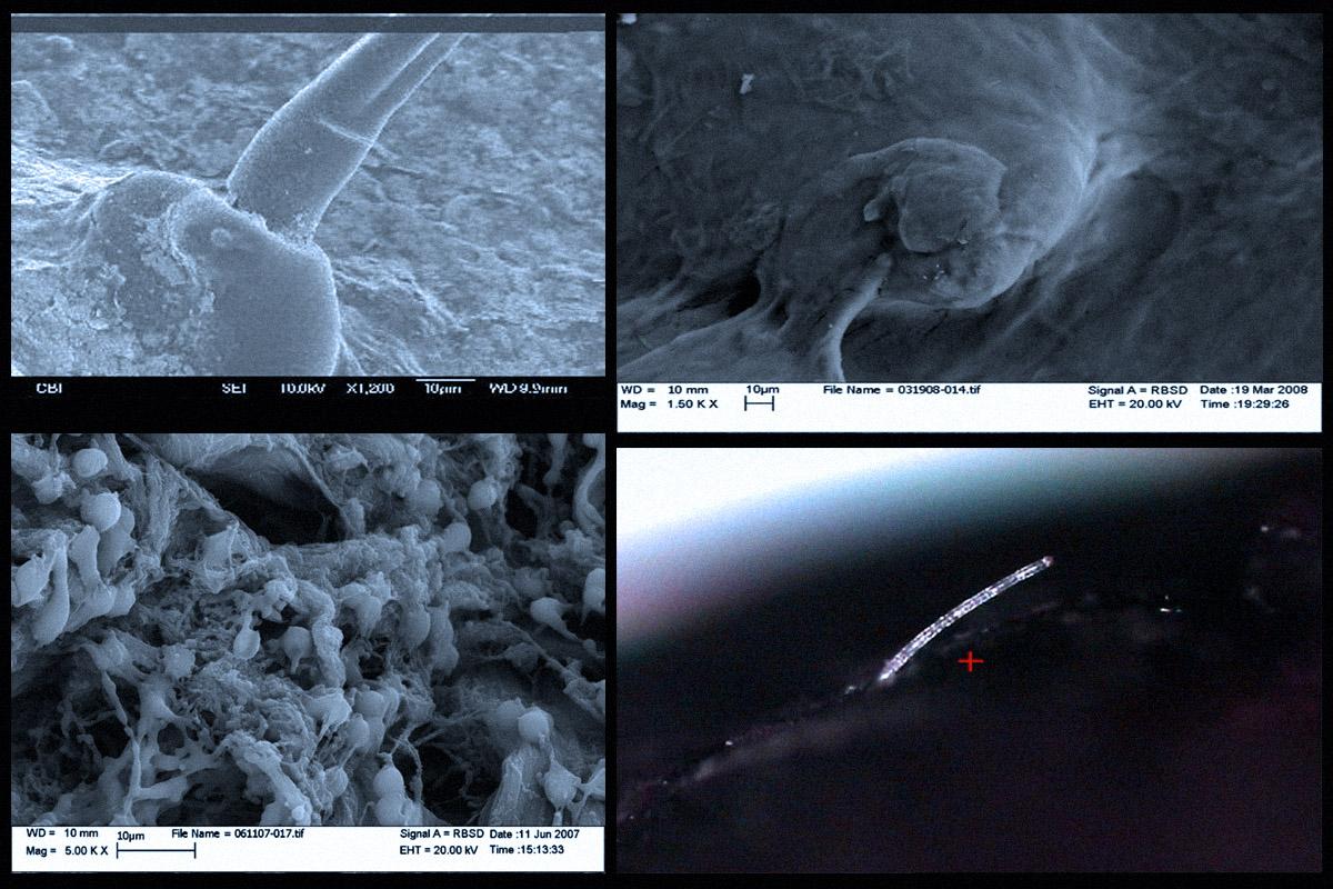 Μετεωρολογικός Πόλεμος – Αεροψεκασμοί - Εικόνα20