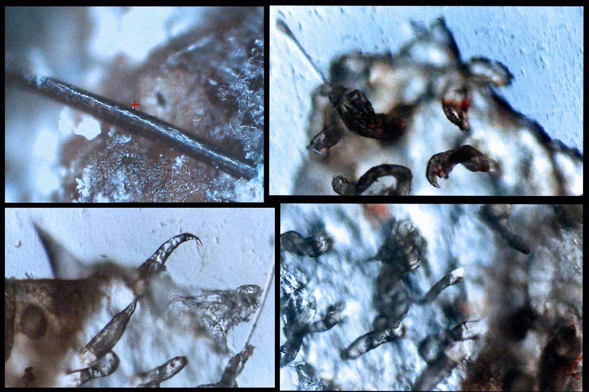 Μετεωρολογικός Πόλεμος – Αεροψεκασμοί - Εικόνα22