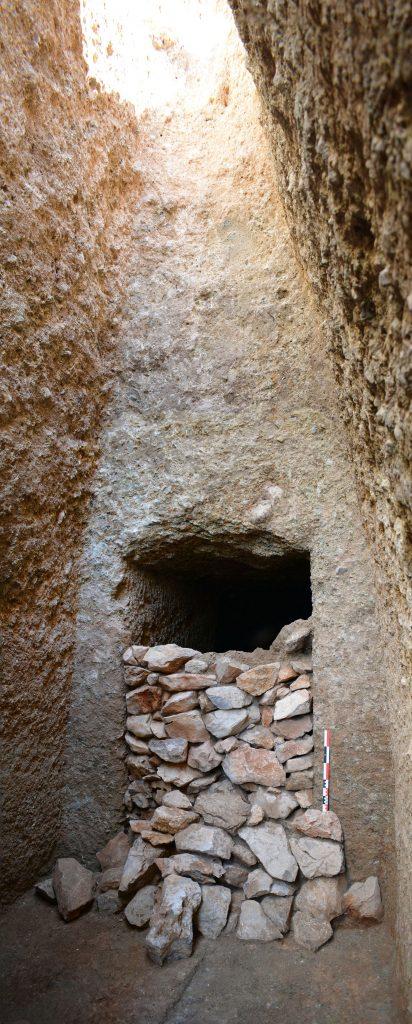 Σημαντική ανακάλυψη στον Ορχομενό: Βρέθηκε μυκηναϊκός τάφος με έναν νεκρό πολεμιστή (εικόνες) - Εικόνα5