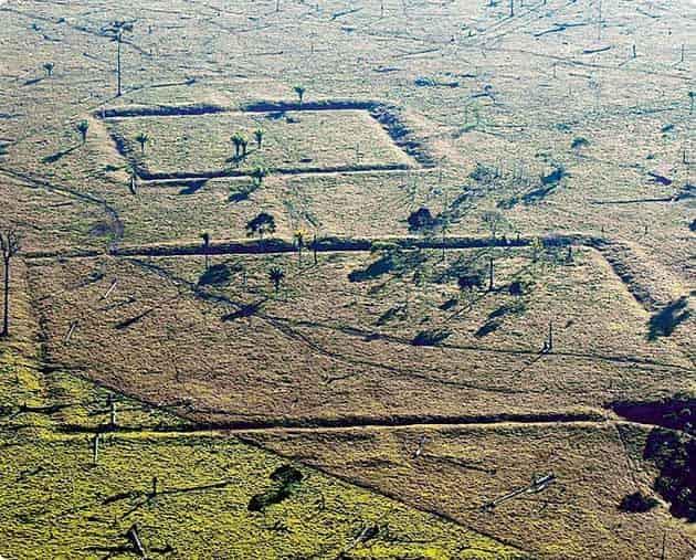 Σοκαριστικές Αποδείξεις Δείχνουν την Ύπαρξη Αρχαίου Προηγμένου Πολιτισμού πριν από 100.000 χρόνια - Εικόνα2