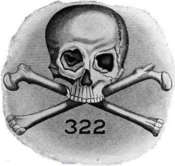 and-Bones-502393