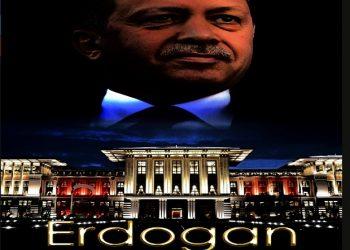 erdogan-king
